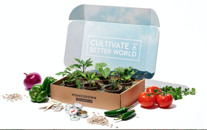Chipolte National Plant a Seed Day
